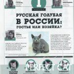 """Наша статья в журнале """"Друг"""""""