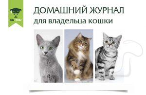 Обложка Журнала для владельцев кошек