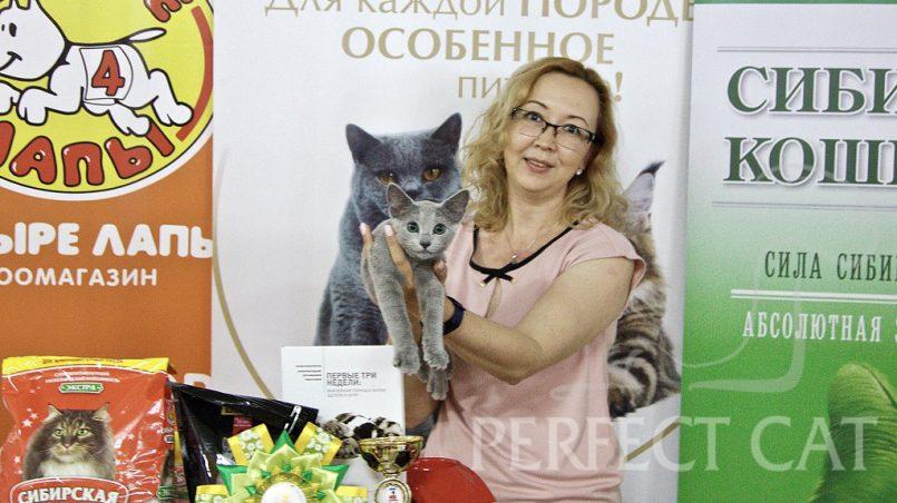16 июня 2018 г. Москва. WCF.